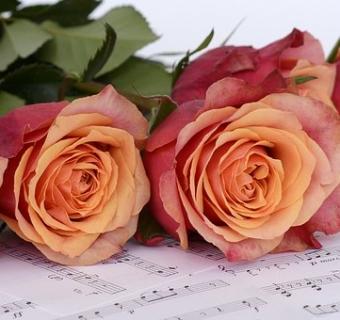 EVOCAZIONI: MUSICA e POESIA – Quando le parole diventano note musicali –